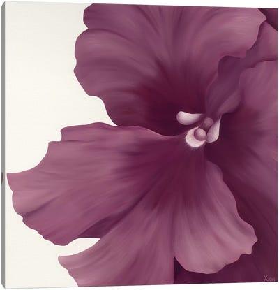 Violet Flower I Canvas Art Print
