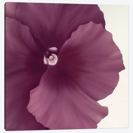 Violet Flower II Canvas Print #YPH65} by Yvonne Poelstra-Holzhaus Canvas Wall Art