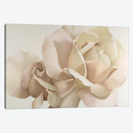 White Rose 3-Piece Canvas #YPH67} by Yvonne Poelstra-Holzhaus Canvas Artwork