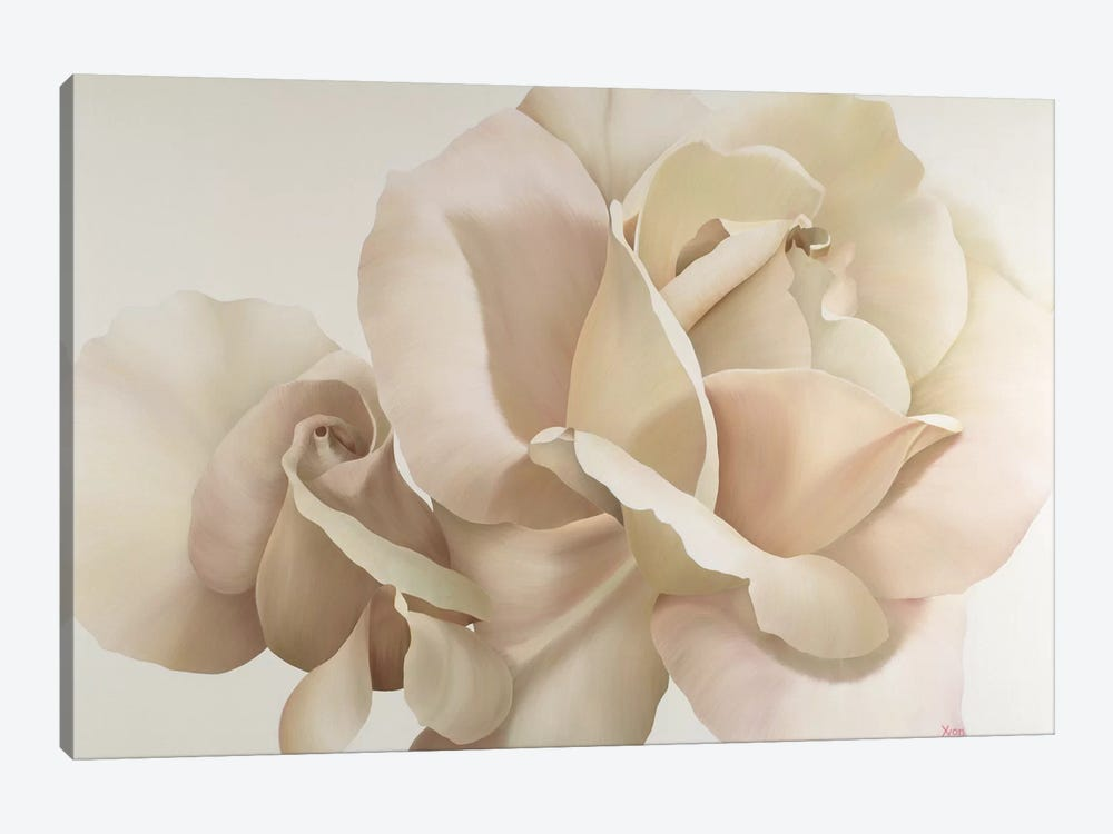 White Rose by Yvonne Poelstra-Holzhaus 1-piece Canvas Wall Art