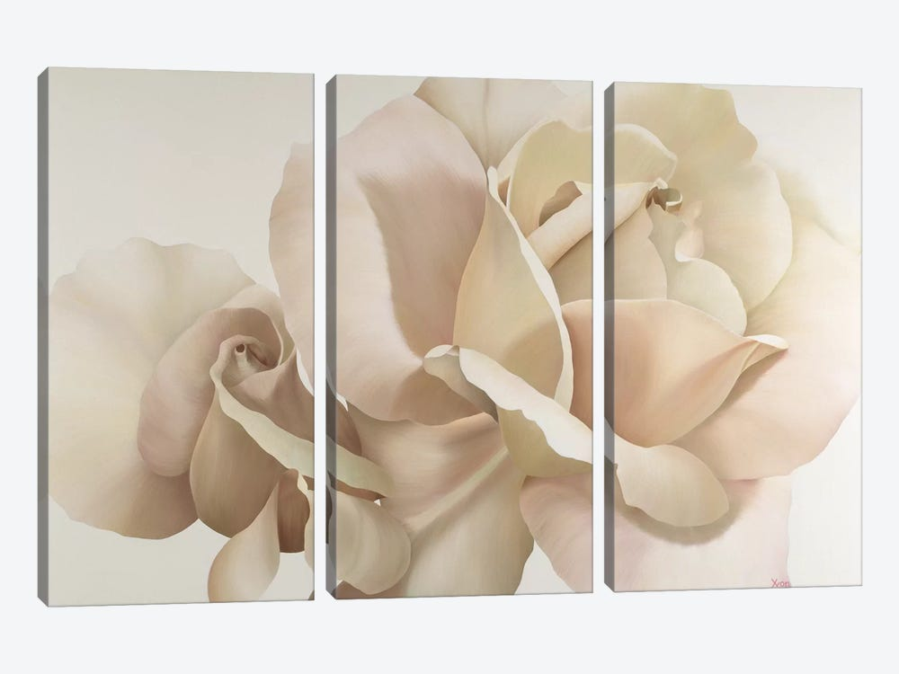 White Rose by Yvonne Poelstra-Holzhaus 3-piece Canvas Wall Art