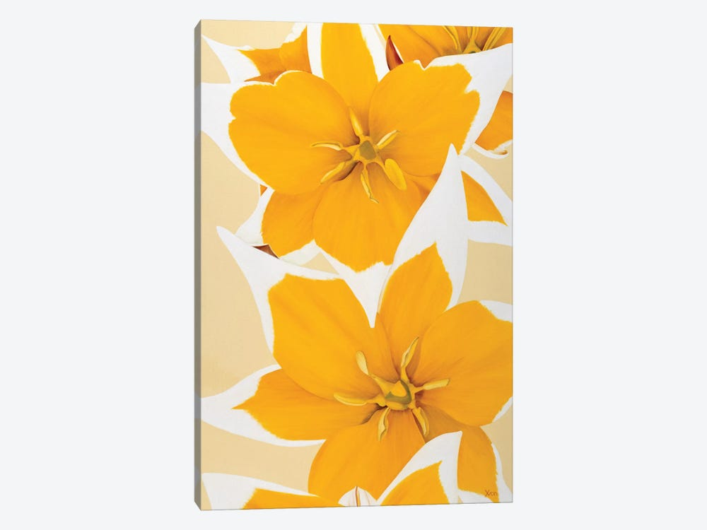 Yellow Missy by Yvonne Poelstra-Holzhaus 1-piece Canvas Print