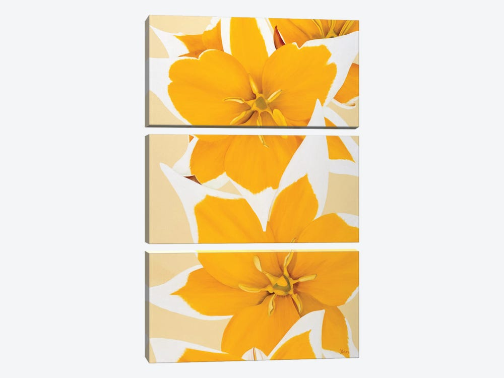 Yellow Missy by Yvonne Poelstra-Holzhaus 3-piece Canvas Print
