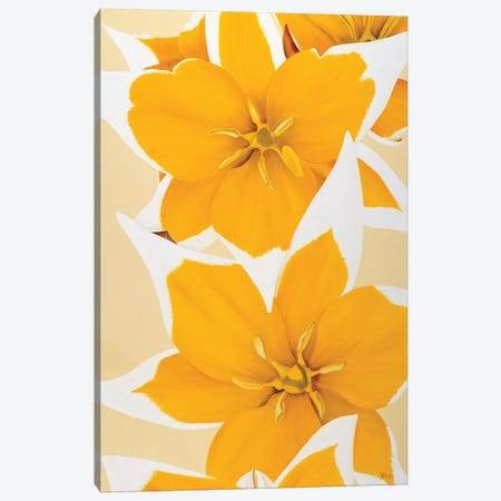 Yellow Missy Canvas Print #YPH68} by Yvonne Poelstra-Holzhaus Canvas Art Print