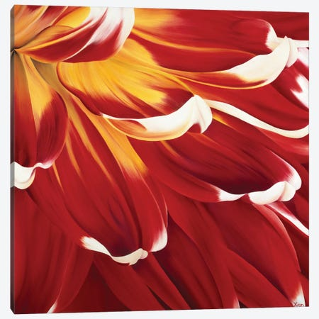 Colourful Floral I Canvas Print #YPH6} by Yvonne Poelstra-Holzhaus Art Print