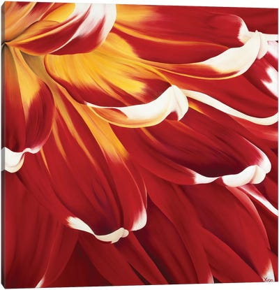 Colourful Floral I Canvas Art Print