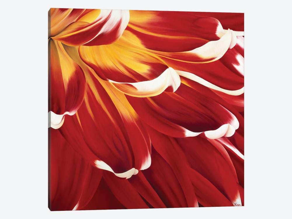 Colourful Floral I by Yvonne Poelstra-Holzhaus 1-piece Canvas Art Print