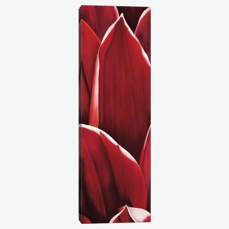 Dahlia I Canvas Print #YPH9} by Yvonne Poelstra-Holzhaus Canvas Artwork