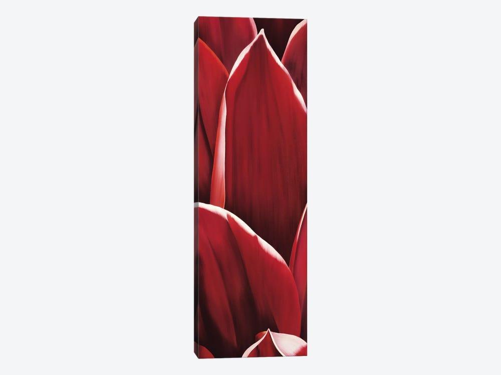 Dahlia I by Yvonne Poelstra-Holzhaus 1-piece Canvas Wall Art