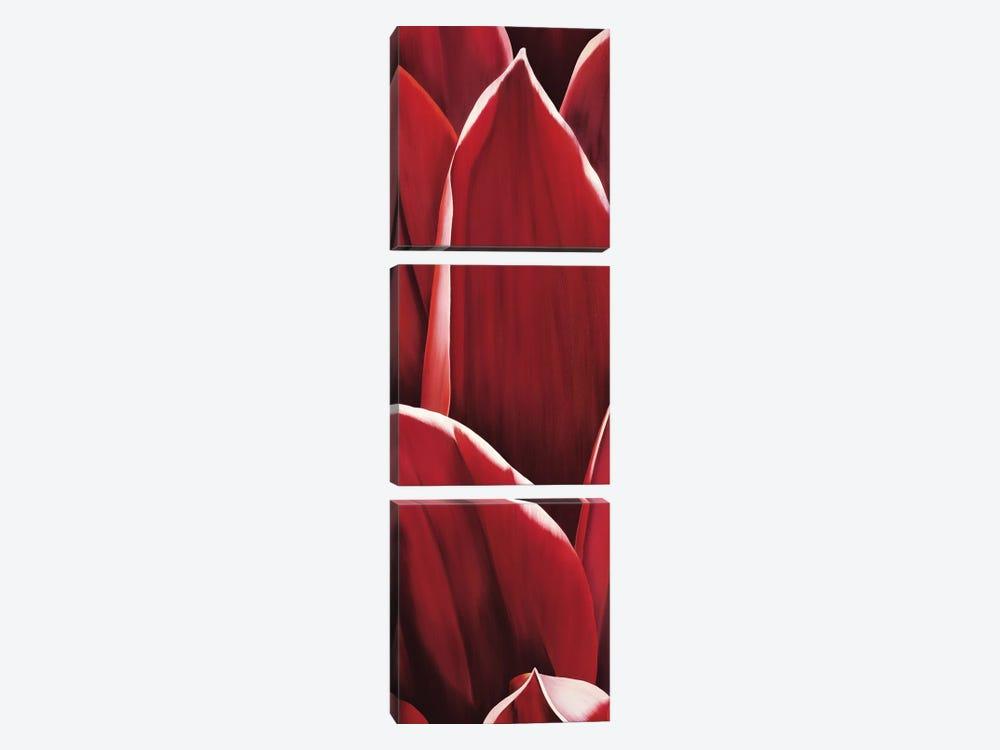 Dahlia I by Yvonne Poelstra-Holzhaus 3-piece Canvas Wall Art