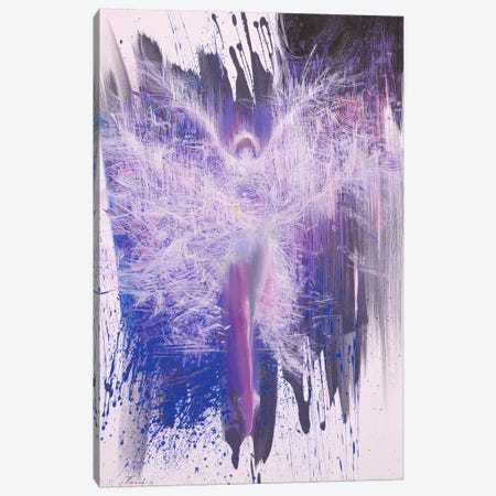 Flying Canvas Print #YPR107} by Yuri Pysar Canvas Wall Art
