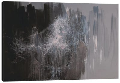 The Silver Dance Canvas Print #YPR119