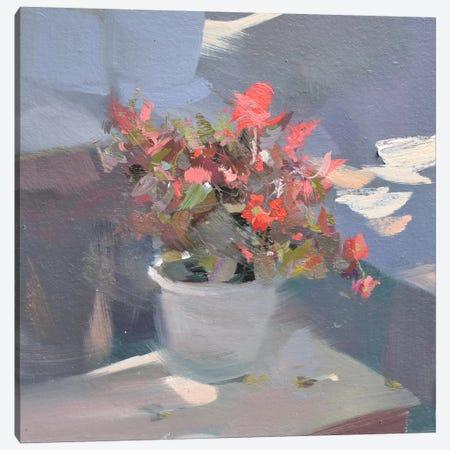 Daylight Canvas Print #YPR130} by Yuri Pysar Canvas Art