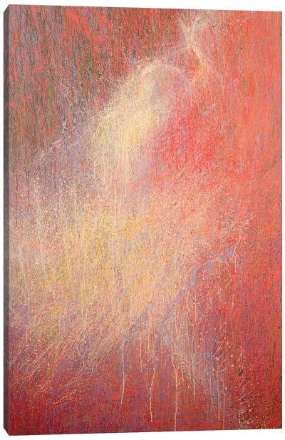 The Whisper of Snow Canvas Art Print