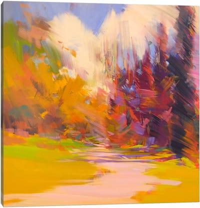 Light Way Canvas Print #YPR161