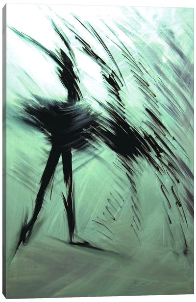 Morning Dance Canvas Print #YPR16