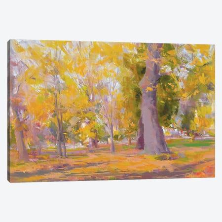 The Park Canvas Print #YPR173} by Yuri Pysar Canvas Wall Art