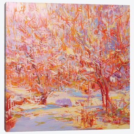 Winter Heat Canvas Print #YPR189} by Yuri Pysar Art Print