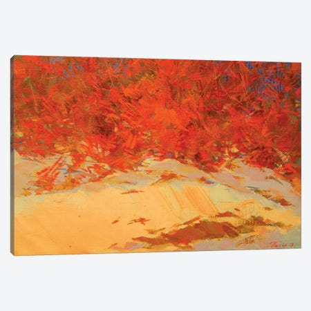 Energy of the Winter Canvas Print #YPR190} by Yuri Pysar Canvas Art
