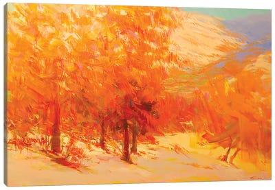 Firing Sunset Canvas Art Print