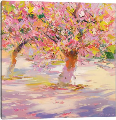 Sakura Blossom Canvas Art Print