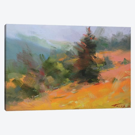 Carpathians 3-Piece Canvas #YPR212} by Yuri Pysar Canvas Print