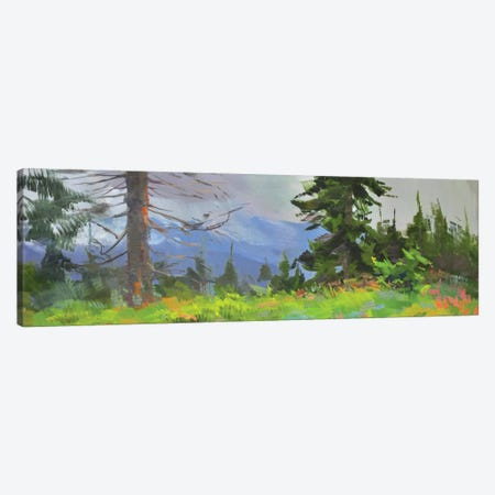Panorama Canvas Print #YPR219} by Yuri Pysar Canvas Art Print