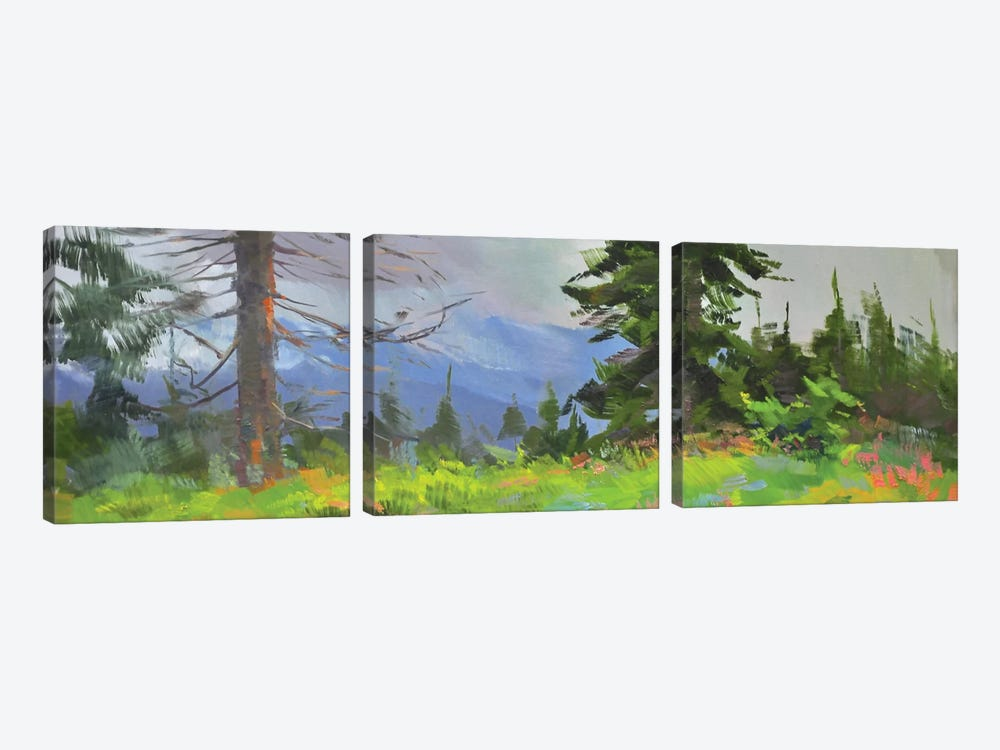 Panorama 3-piece Canvas Art
