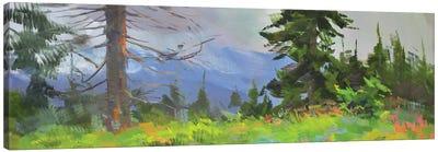 Panorama Canvas Art Print