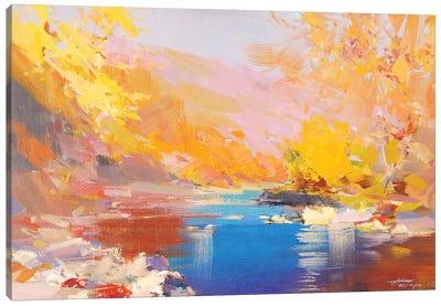 Sparkle Canvas Art Print