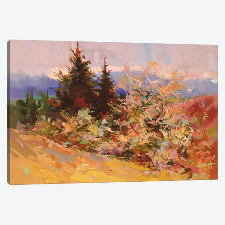 Lace Evening Canvas Print #YPR231} by Yuri Pysar Canvas Print