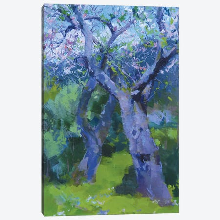 The Couple in Blossom Canvas Print #YPR240} by Yuri Pysar Canvas Wall Art