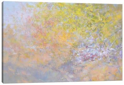 Light. Crimea Canvas Art Print