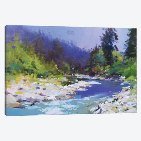 River and Stones Canvas Print #YPR246} by Yuri Pysar Art Print