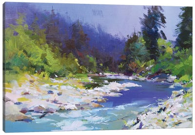 River and Stones Canvas Art Print