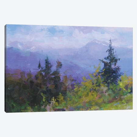 Brides of Carpathians Canvas Print #YPR247} by Yuri Pysar Canvas Print