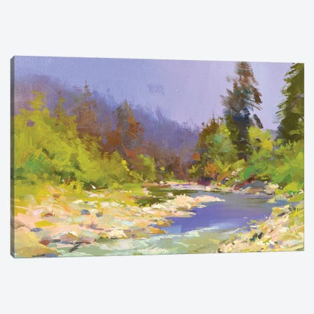 River and Stones II Canvas Print #YPR260} by Yuri Pysar Canvas Art