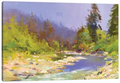 River and Stones II Canvas Art Print