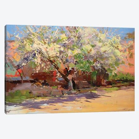 Tree's Smile Canvas Print #YPR284} by Yuri Pysar Art Print
