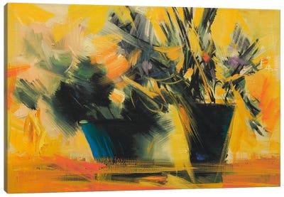 Dark In Sun Canvas Art Print