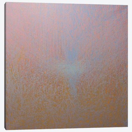 Lace Canvas Print #YPR96} by Yuri Pysar Canvas Art Print