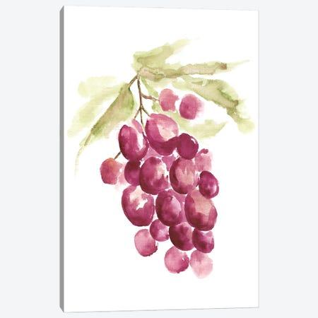 Botanical Berry Canvas Print #YSA9} by Yvette St.Amant Canvas Wall Art