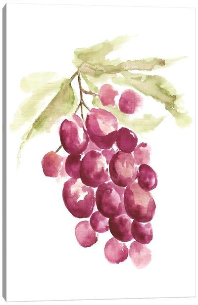 Botanical Berry Canvas Art Print