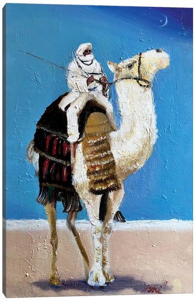 A Bedouin Canvas Art Print