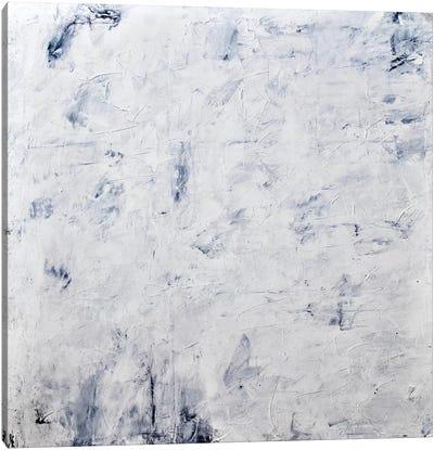 White Phoenix Canvas Art Print