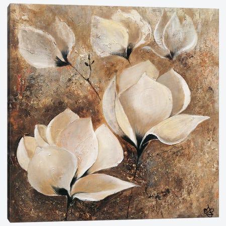 Magnolia I Canvas Print #YUL3} by Yuliya Volynets Art Print