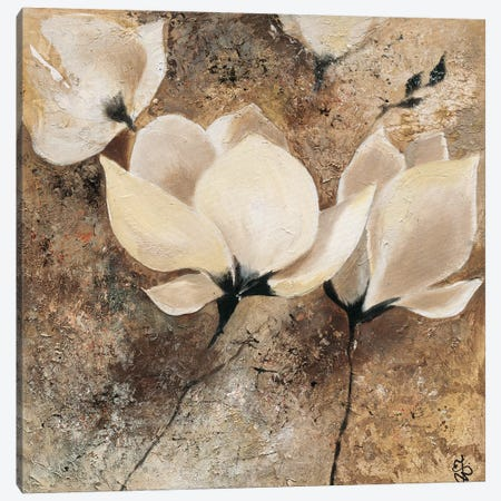 Magnolia II Canvas Print #YUL4} by Yuliya Volynets Canvas Wall Art