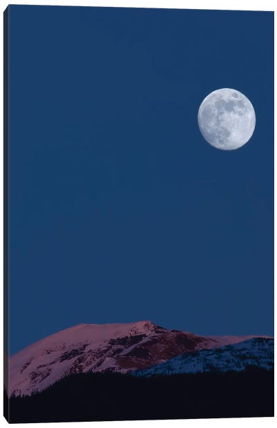 Full Moon At Alpenglow. Canvas Art Print