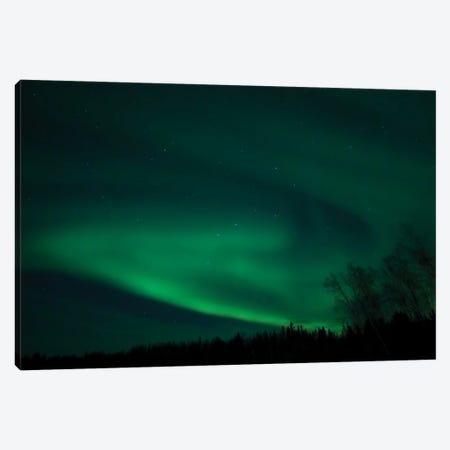 Green Aurora Above Far Lake, Yellowknife, Northwest Territories, Canada. Canvas Print #YUT15} by Yuichi Takasaka Canvas Art Print
