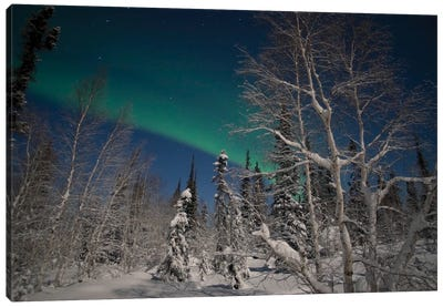 Green Aurora At Prelude Lake, Yellowknife, Northwest Territories, Canada. Canvas Art Print